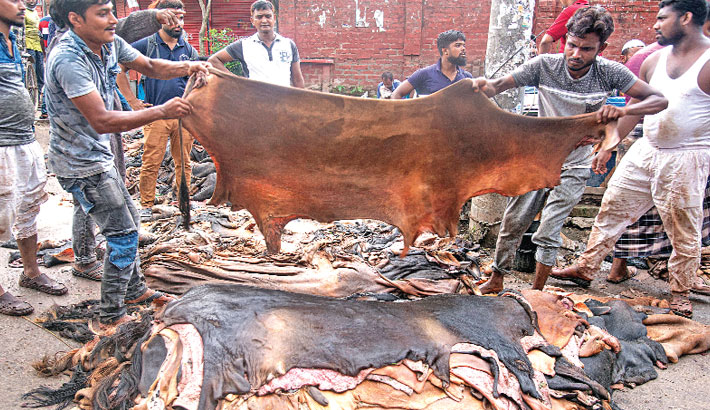 Workers pile up rawhide of sacrificial animals at a place in Railjumti area of Bogura district town. The photo was taken on Thursday.— Monirul Islam Maruf