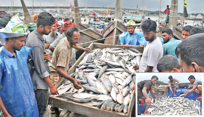 Fishermen return with hilsa after 65-day ban on fishing