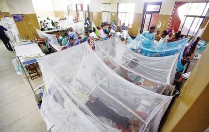 105 dengue patients  hospitalised in last 24 hours