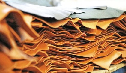 Special steps needed to revive  leather industry