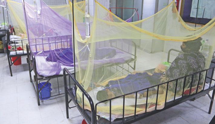 DSCC, DNCC begin anti-mosquito drive today
