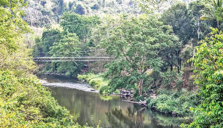 Thailand forest park gets World Heritage nod-566940