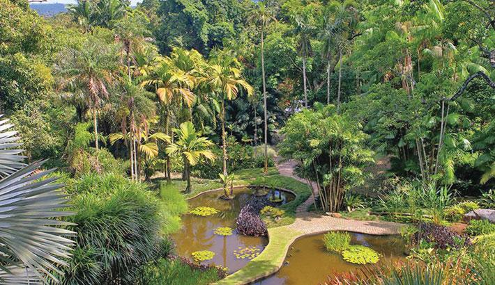 Brazil landscape garden granted UNESCO world heritage status