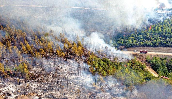 4 killed as wildfires sweep Turkey