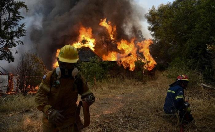 Dozen homes destroyed, five hospitalised in Greece forest fire