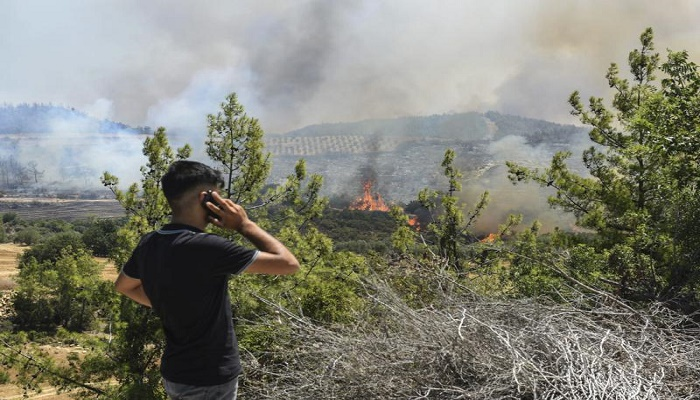 Majority of Turkey wildfires under control, official says