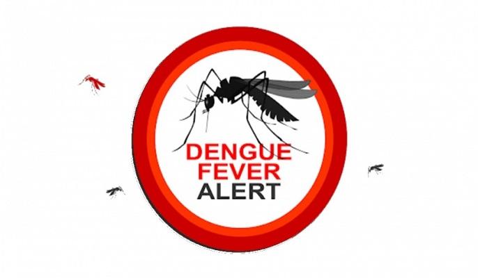 Dengue spike: 287 more hospitalised in 24 hrs