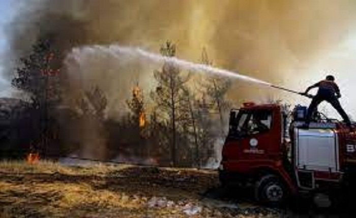 Turkey wildfires: Death toll rises to 8