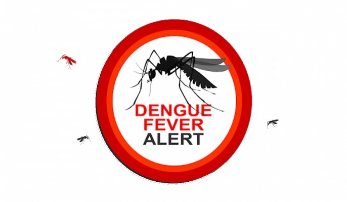 Alarming Dengue surge: 264 more hospitalised in 24 hrs