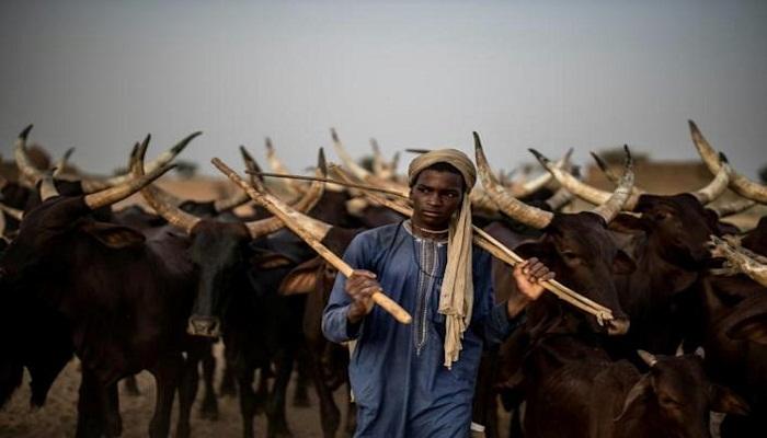 Fighting between farmers, herders kills 22 in Chad: official