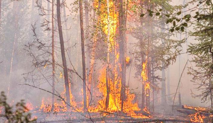 Siberian wildfires worsen as smoke reaches North Pole