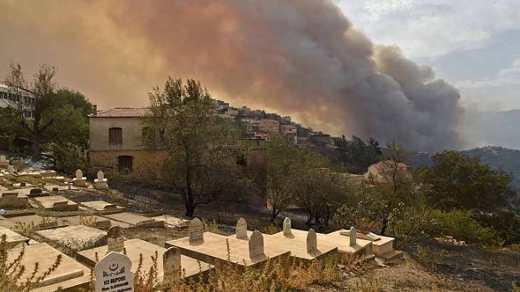 Wildfires in Algeria leave 42 dead, including 25 soldiers