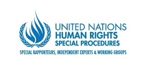 Israel must safeguard human rights defenders in Palestinian– UN expert