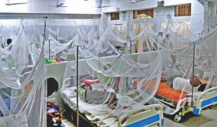 Dengue spike: 213 more patients hospitalised in 24 hrs