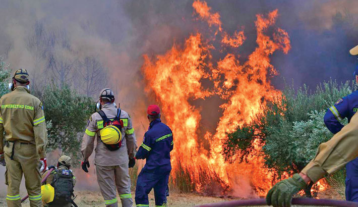 Greece facing 'ecological disaster' from wildfires