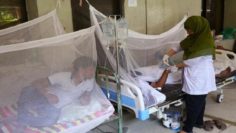 291 dengue patients hospitalised in 24 hours: DGHS