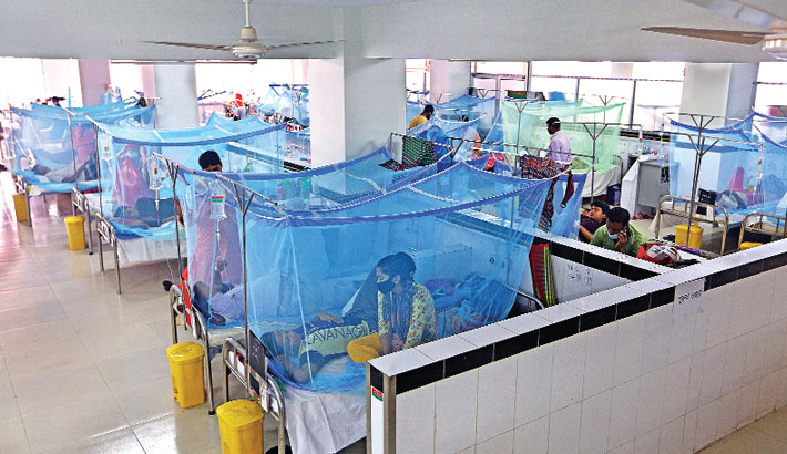 258 more hospitalised with dengue