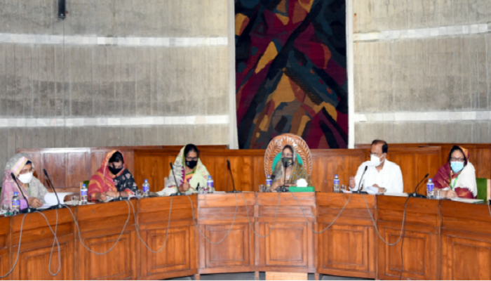 JS body for fresh projects to provide training to women