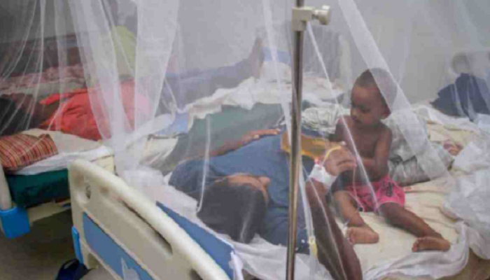 Dengue:  Death toll rises to 41 with 265 more hospitalised