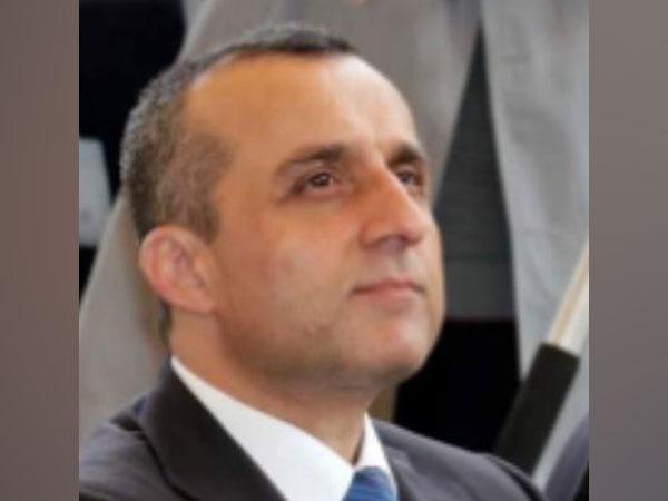 Doha peace talks marked 'beginning of the end', says Amrullah Saleh