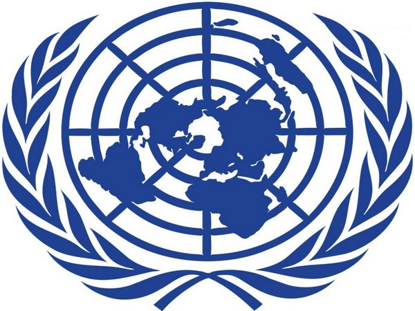 UNSC: Afghanistan should not be used as terrorist training ground