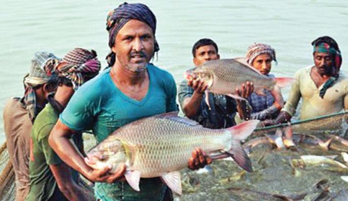 National Fisheries Week 2021