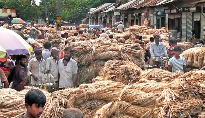 Growers bring huge raw jute for sale at a wholesale jute market in Shailkupa upazila of Jhenaidah district. Lack of customers and low prices frustrate the jute growers. The photo was taken on Wednesday. – Sun Photo