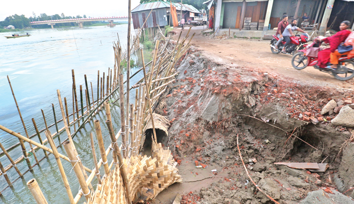 Erosion by the Kaliganga River has taken a serious turn in Manikganj, swelling dwelling houses, croplands, educational institutions and worship places. The photo was taken from Balirtek area on Thursday. — MD NASIR UDDIN