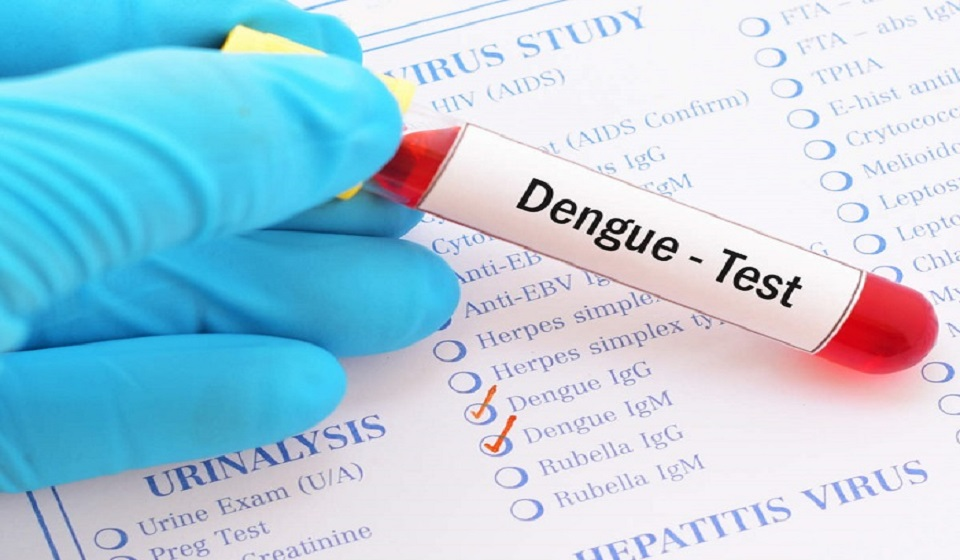 Dengue: 163 new patients hospitalised with no new death