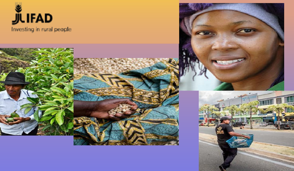 Global food systems must be disrupted and changed – new IFAD report recommends concrete actions for policymakers