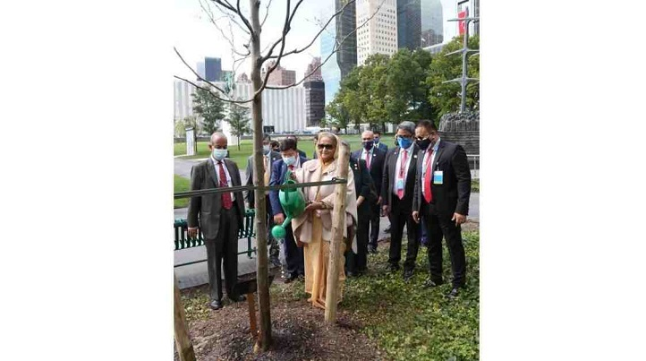 PM plants tree at UN gardens, dedicates those to Bangabandhu
