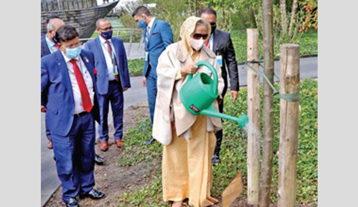 PM plants tree at UN gardens