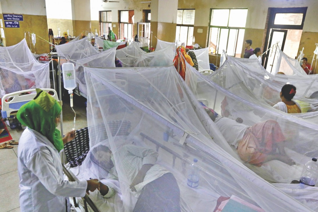 229 more hospitalised with dengue