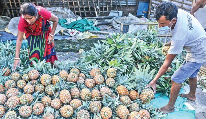 Vendors arrange pineapples for sale along a road in Siliguri on Saturday.