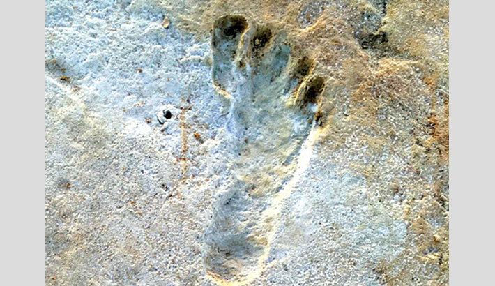 Ancient footprints re-write humanity's history in the Americas