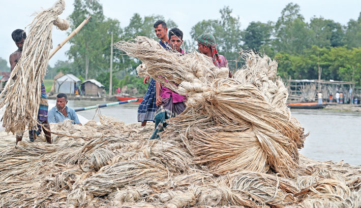 Farmers have brought jute to a local market for sale at Dighirpar in Tongibari upazila of Munshiganj district. The photo was taken on Saturday. Reaz Ahmed Sumon