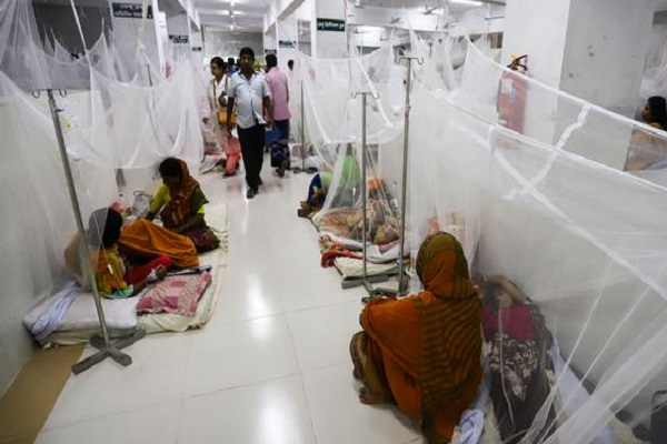 Dengue claims 2 more lives in Dhaka, 242 new patients hospitalised