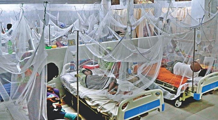 2 more die of dengue, 214 hospitalised