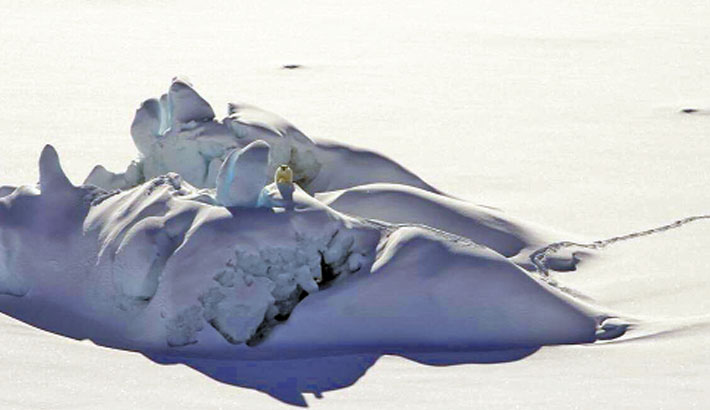 Arctic sea ice hits annual low