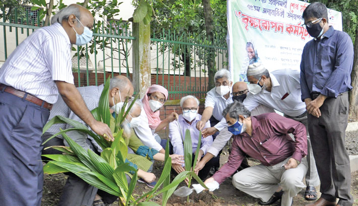 BUET vice-chancellor Prof Dr Satya Prasad Majumdar along with other teachers plants a plum sapling on the university playground on Tuesday, marking the 75th birthday of Prime Minister Sheikh Hasina.