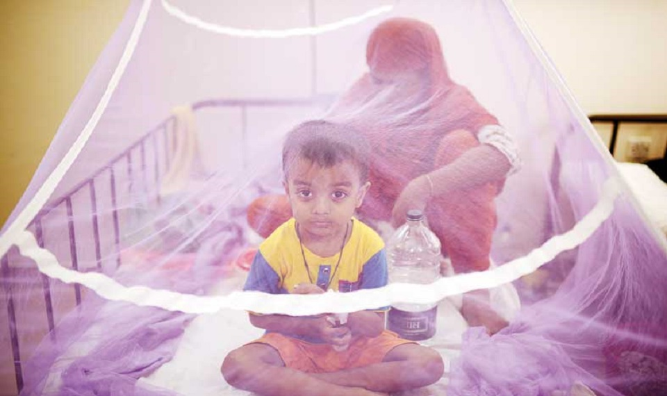Dengue: 1 more dead, 165 hospitalised in 24 hours