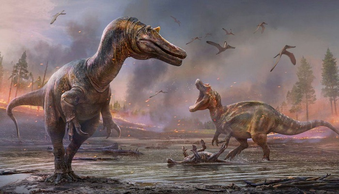 New species of dinosaur unearthed by Isle of Wight fossil hunters