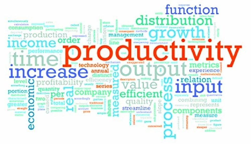 National Productivity Day today