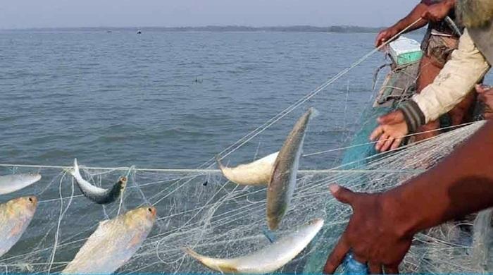 22-day ban on Hilsa fishing begins Sunday