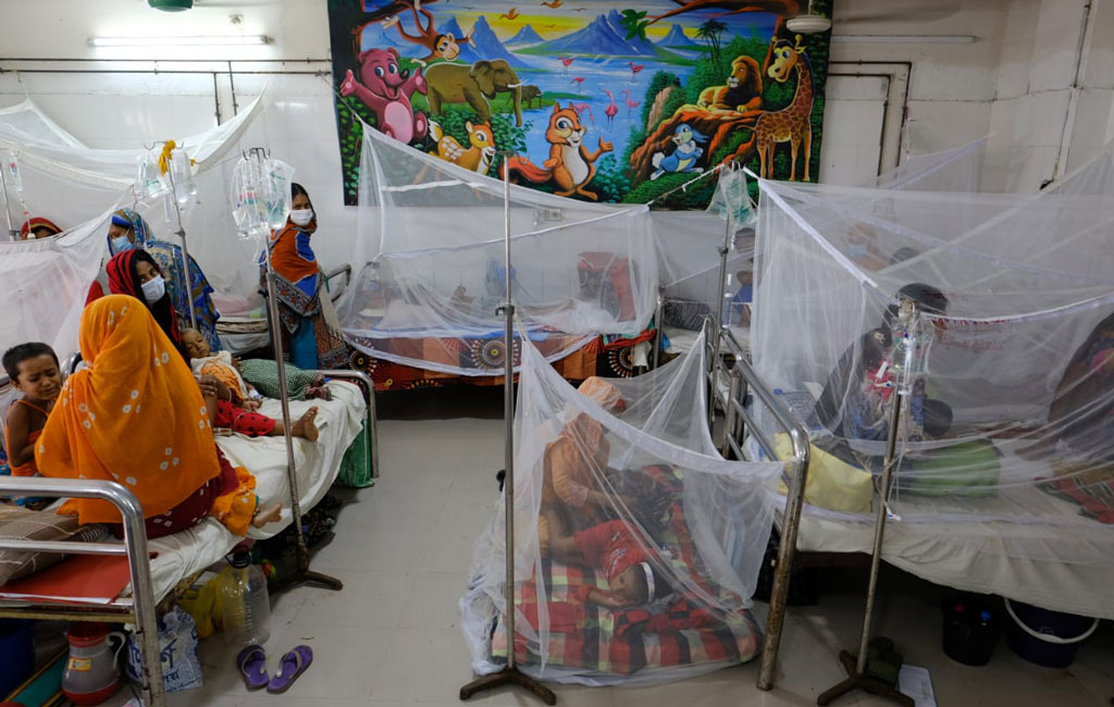 224 more Dengue patients hospitalised in 24 hours