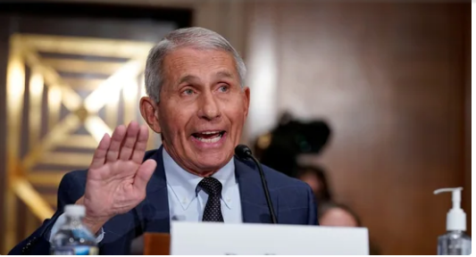 US will see a drop in Covid-19 deaths this winter: Fauci