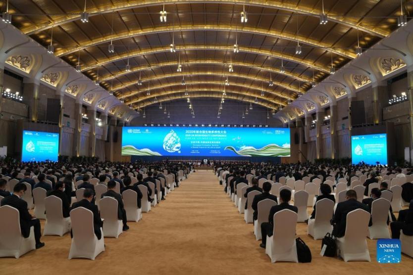 Kunming Declaration adopted at COP15