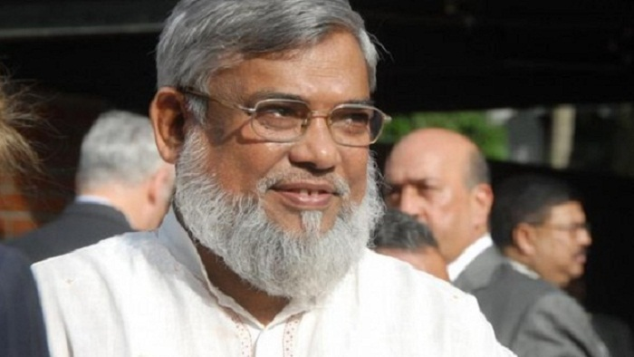 Mojaheed appeal arguments adjourned
