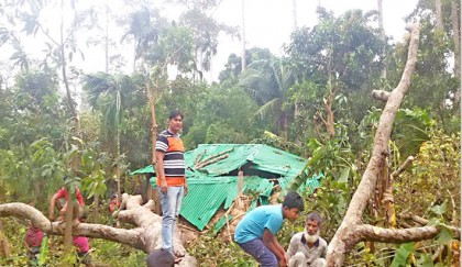 Six killed, many homes  damaged in cyclone