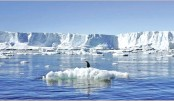 <p>NASA sees unavoidable sea level rise ahead</p>